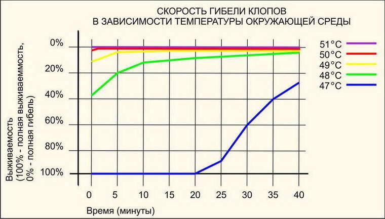 Рисунок 2. График скорости гибели клопов в зависимости от температуры.